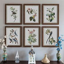 Image of a gallery of 6 botanical prints mounted on a wall above a console table