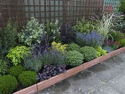 Image of a garden border planted with a mixture of shrubs and plants of different heights