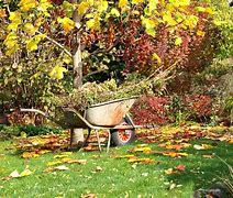 Image of a lawned garden with a wheelbarrow filled with garden prunings
