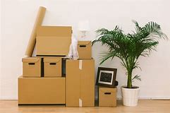 Image showing a pile of packing boxes stacked side by side with a pot plant alongside.