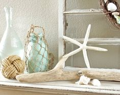 Image of a  white painted shelf on which is a selection of coastal inspired objects including a rope ball, white starfish, a piece of driftwood and shells
